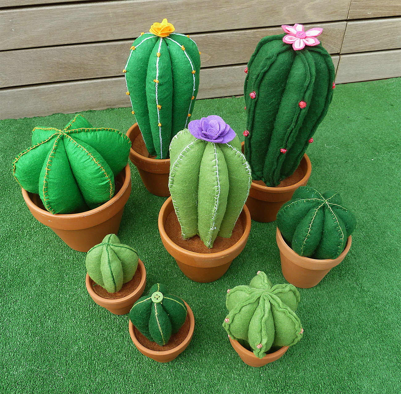 composició cactus feltre