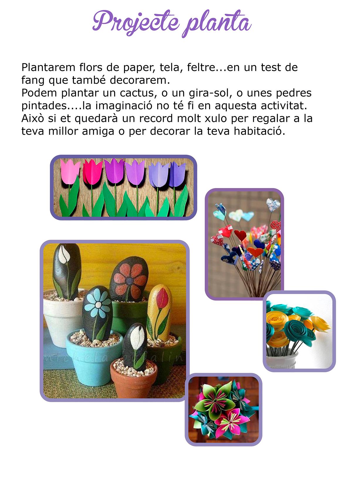 projecte planta